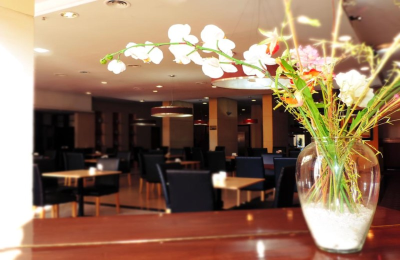 Hotel Ancasti