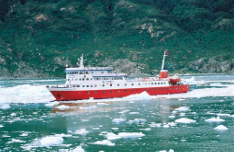 Sail South Chile Puerto Montt/Glaciar San Rafael Cruise