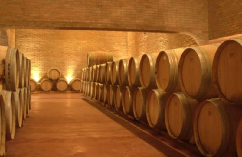 Wine Tour Half Day (Lujan-Maipu)