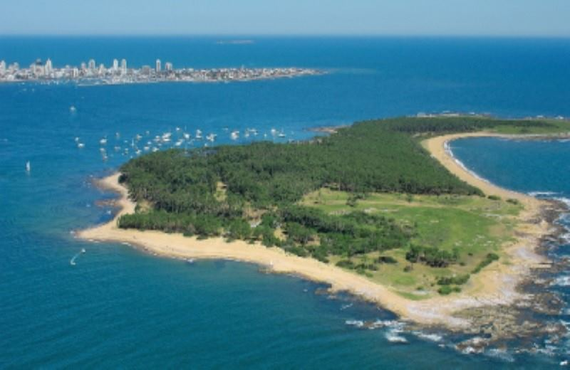 Half Day City Tour In Punta Del Este