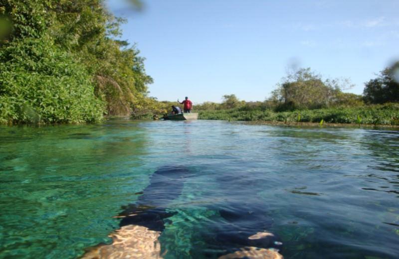 Sucuri River Snorkel Tour