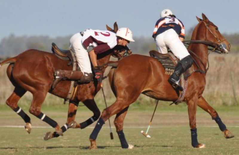 Polo Day At Estancia Puesto Viejo