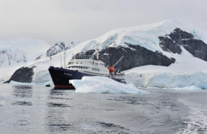 Peninsula Antartica  Cruise - Ilhas Malvinas