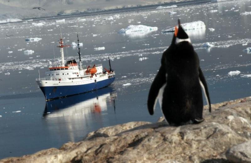 Cruzeiro Antártida Clássico