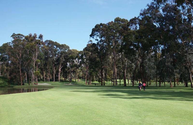 Día De Golf En Buenos Aires