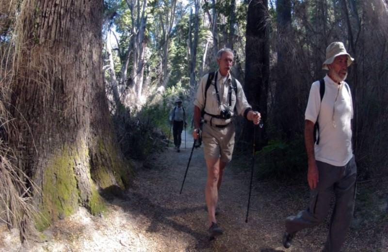 Llao Llao Trekking