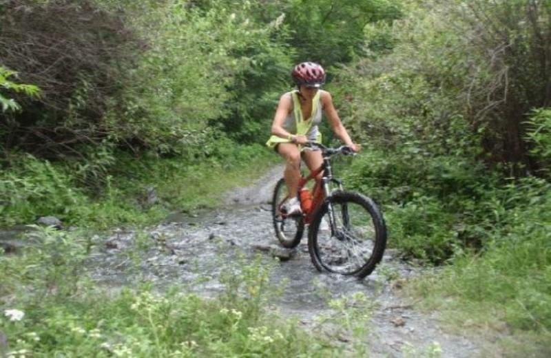 Circuito El Toro En Mountain Bike