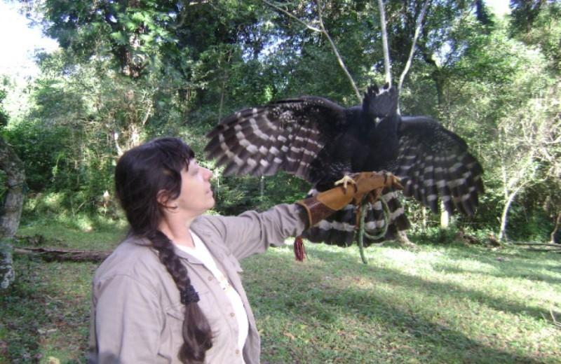 Tour En Casa De Pájaros Güira Oga
