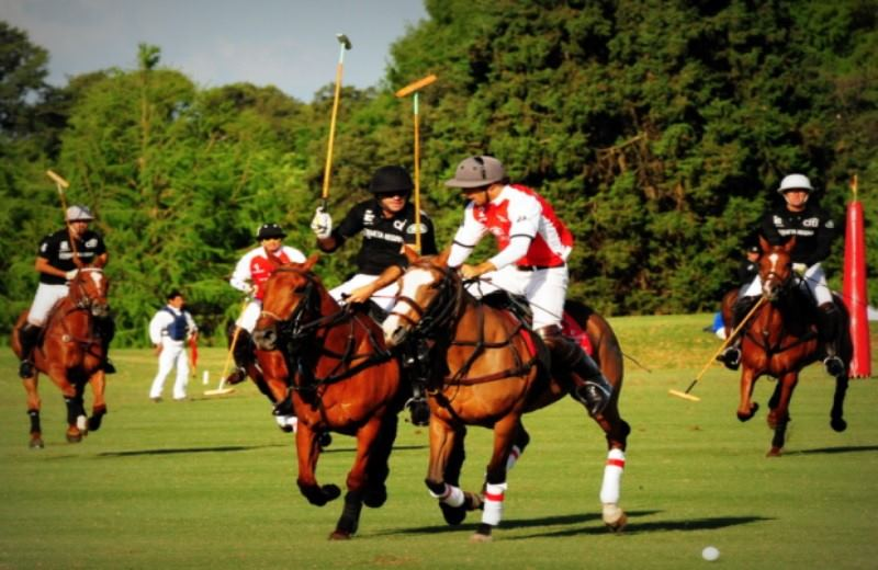 Tours and Tickets for Polo Match in Argentina