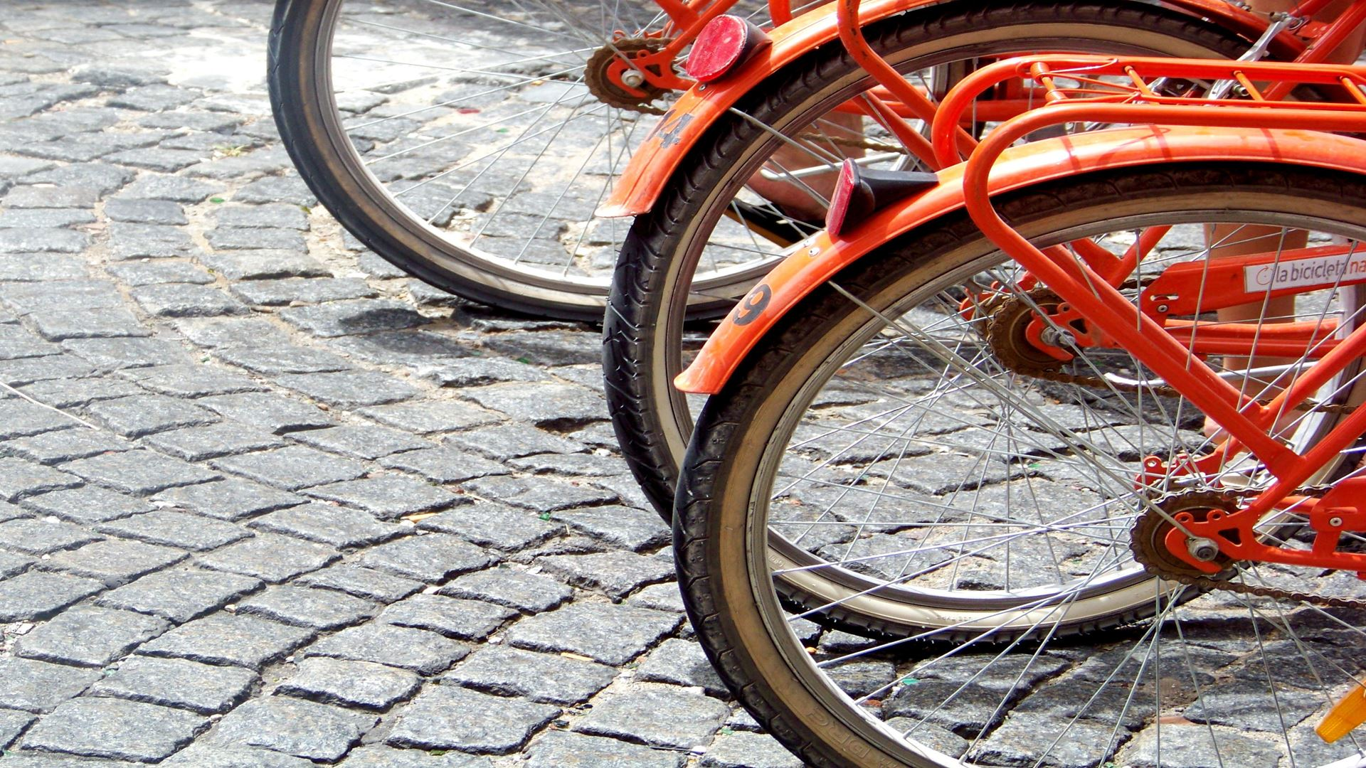 Aluguer De Bicicletas