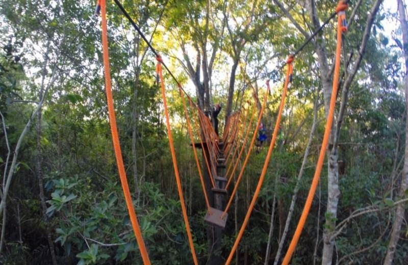 Arborismo In Cabanas