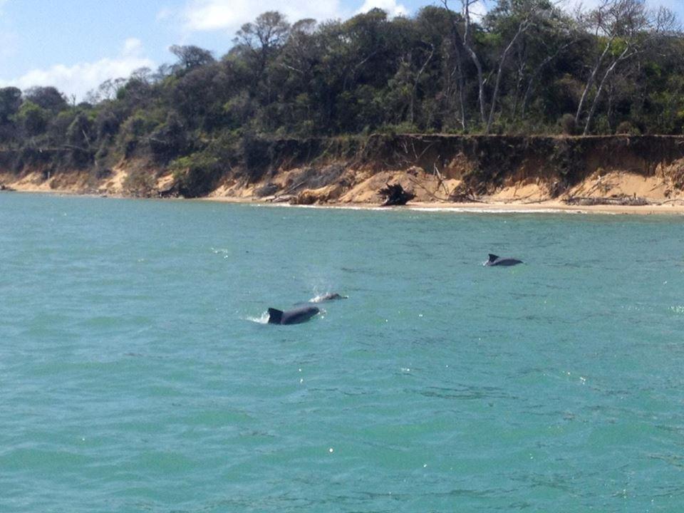 SoleMio Schooner Trip in Guaraíras Lagoon