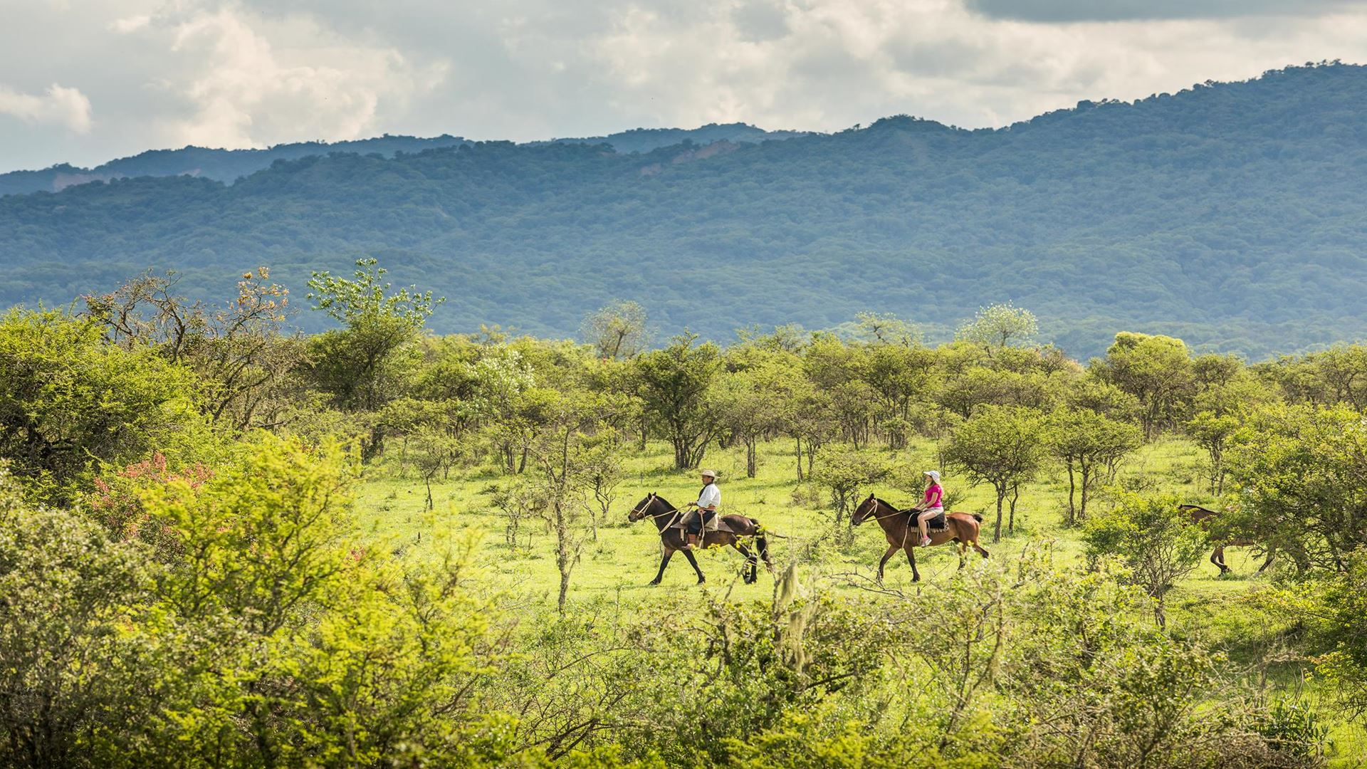 HORSEBACK RIDING TO SANTA RUFINA
