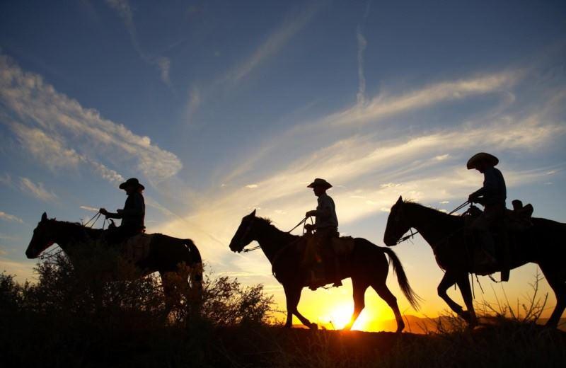 HORSEBACK RIDING IN MENDOZA
