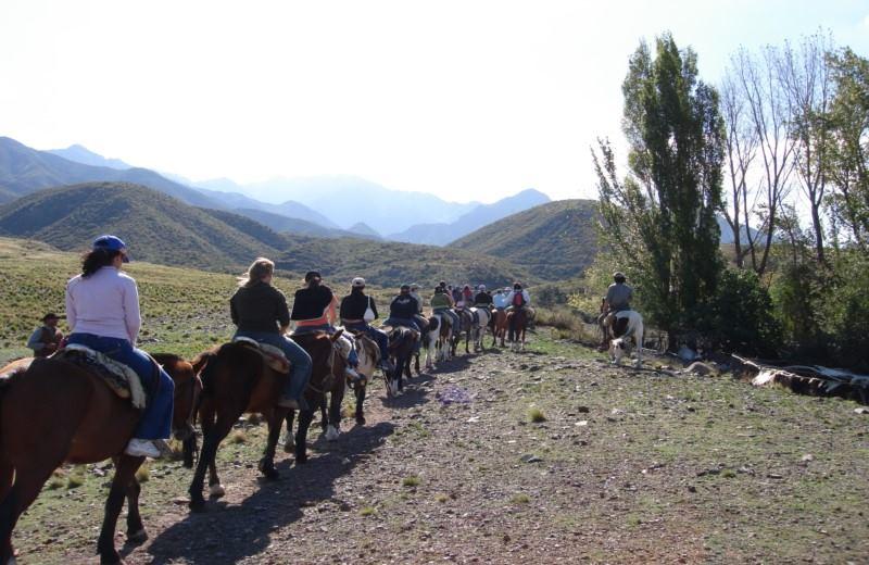 Cabalgata En Mendoza