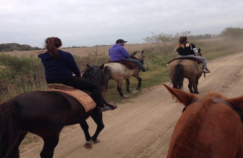 Horse Riding And Countryside Tour