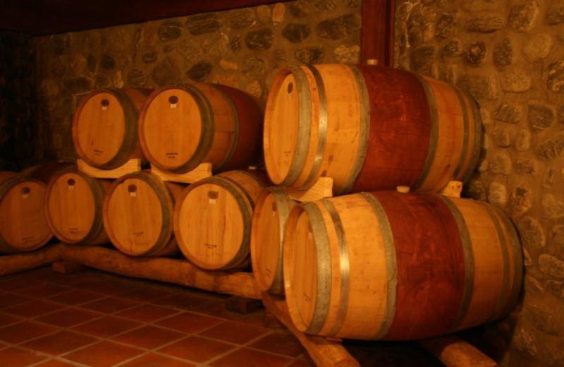 Camino Del Vino Premium