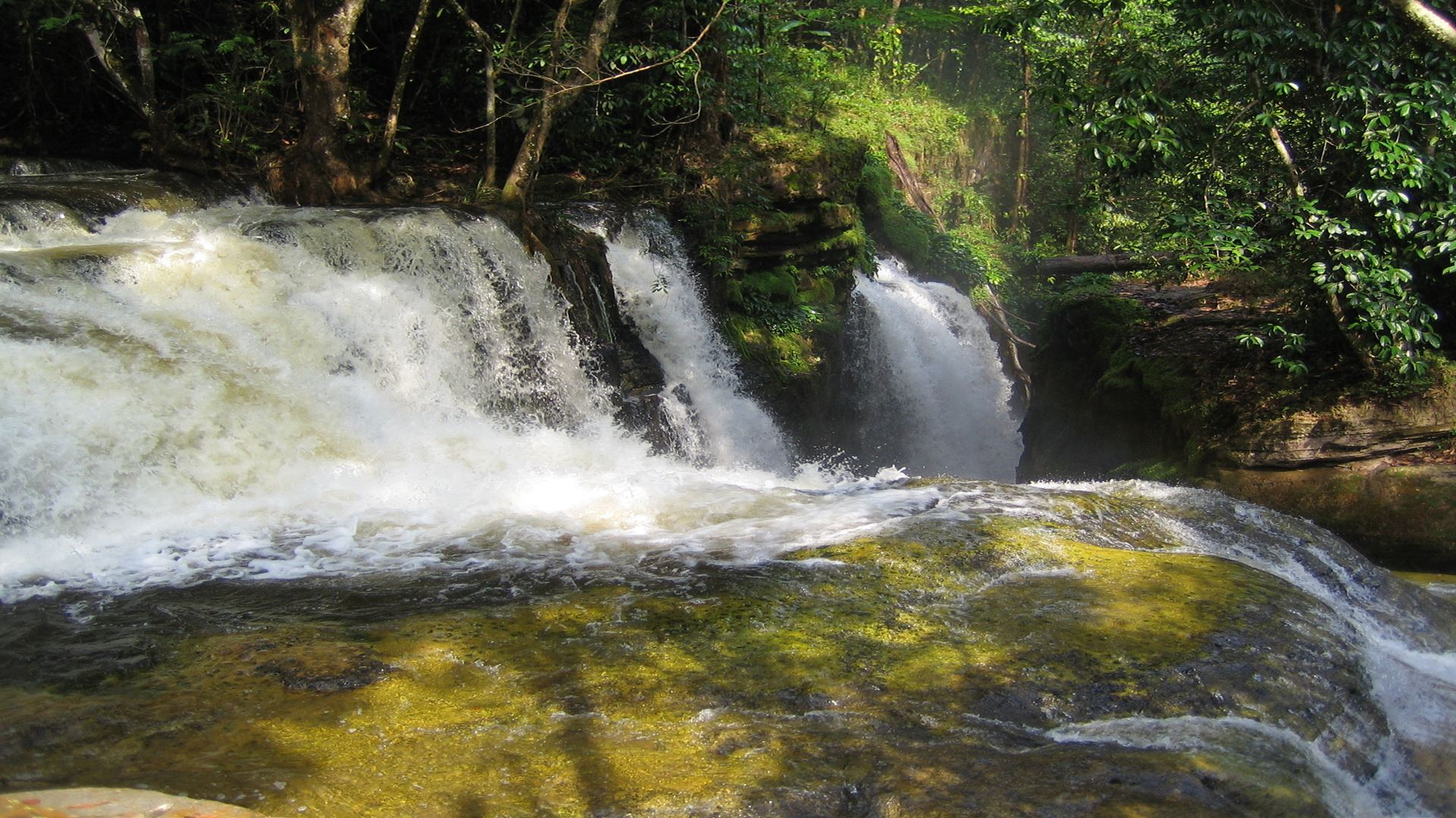PRESIDENTE FIGUEIREDO WATERFALLS
