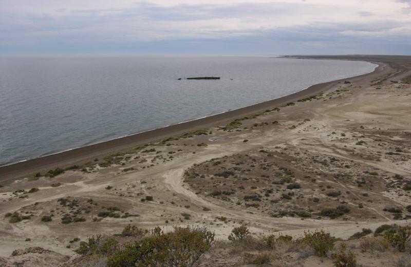 Puerto Madryn City  Tour + Loma