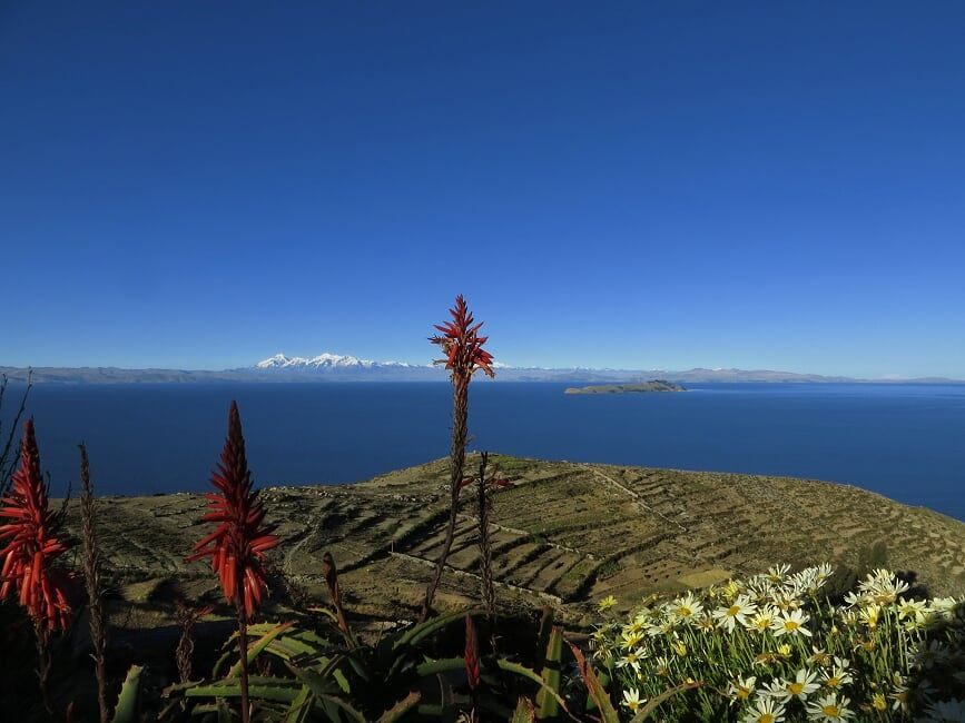 Titicaca lake & islands - 2 days all inclusive