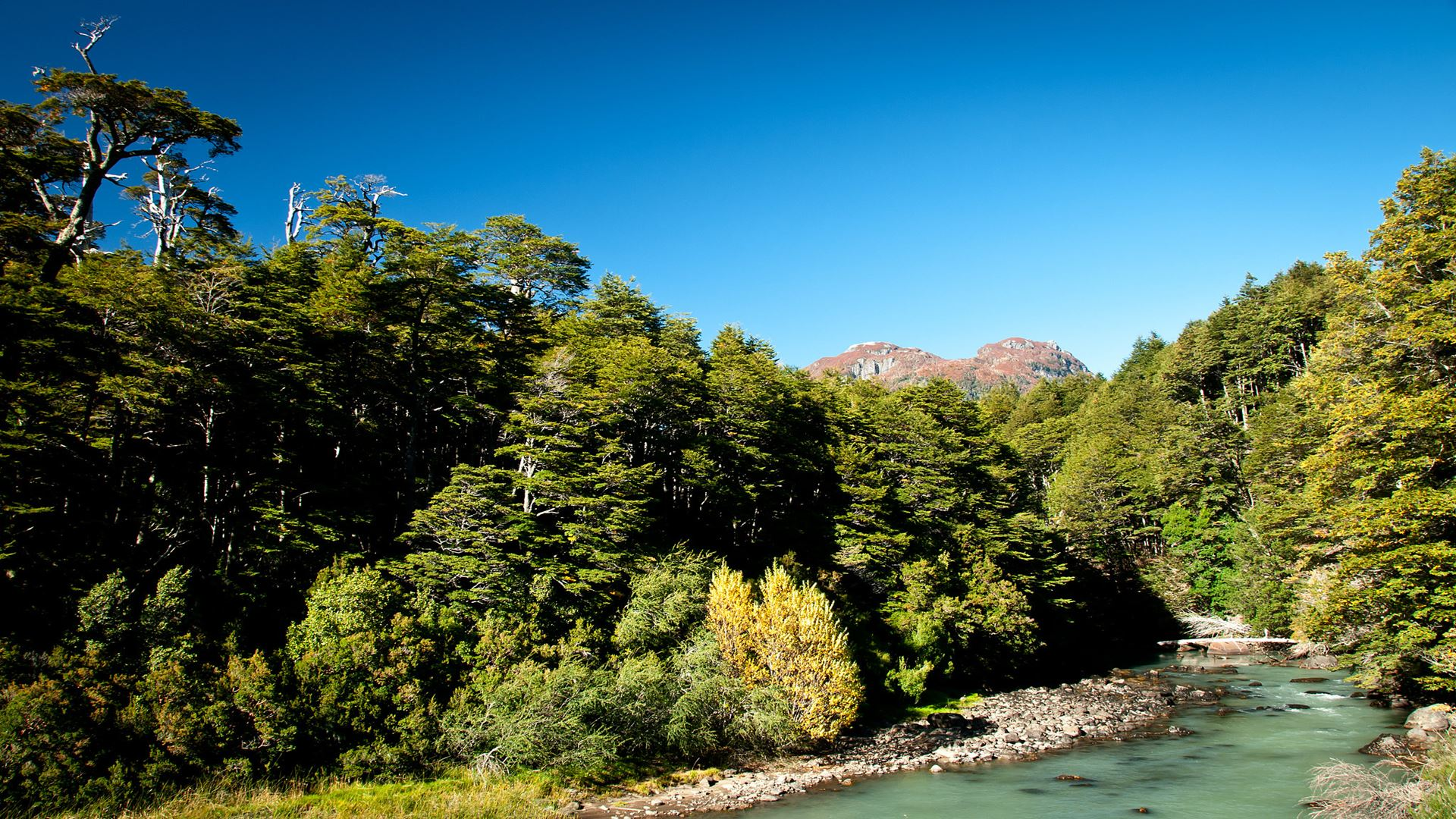 Trans-Andean crossing from Puerto Montt to Bariloche