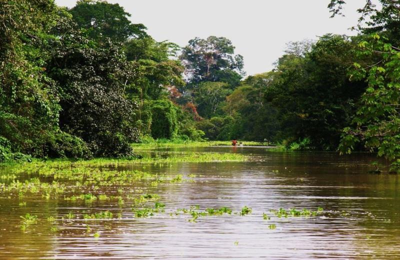 Cruzeiro de Luxo na Amazônia - Delfin 2