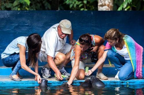 Crucero De Lujo Por El Amazonas  - Delfin I