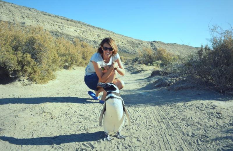 Dia De Campo Y Visita A Colonia De Pinguinos