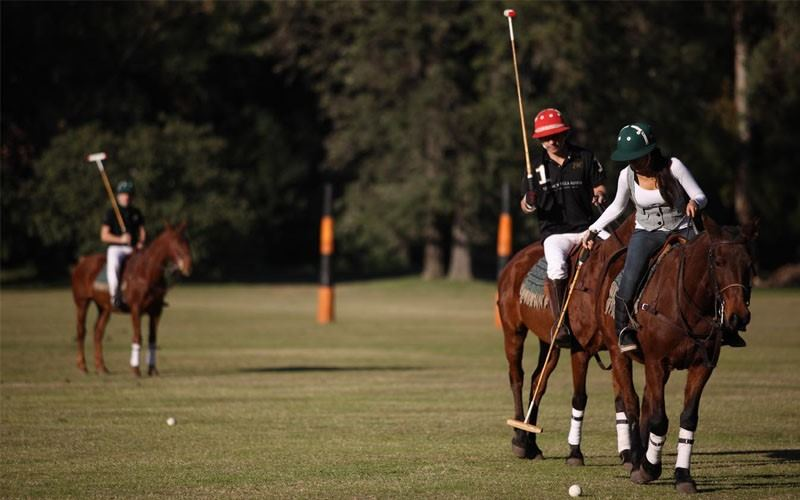 Estancia & Polo Tour