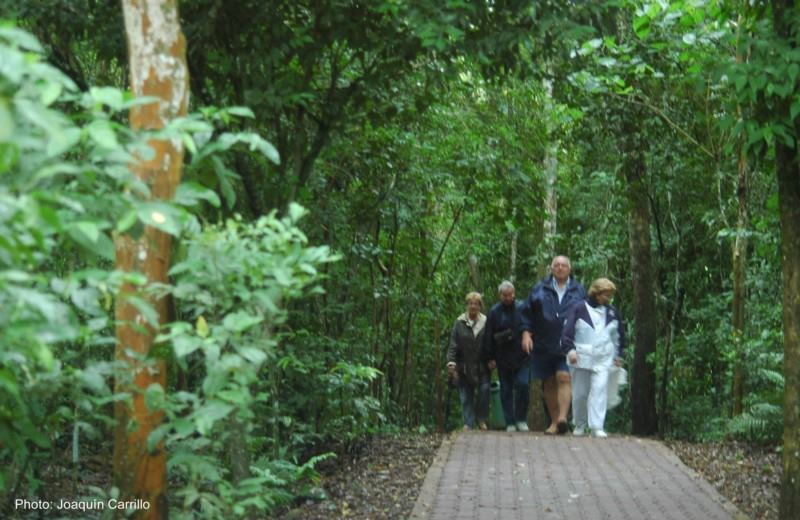 Iguazu Desde Buenos Aires En El Dia