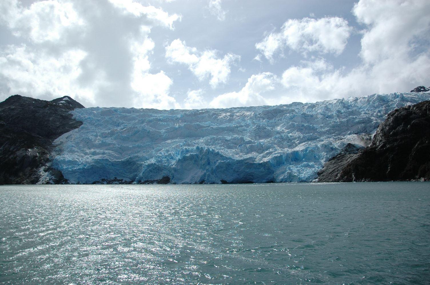 Glaciares Y Ballenas: Programa Todo Incluido