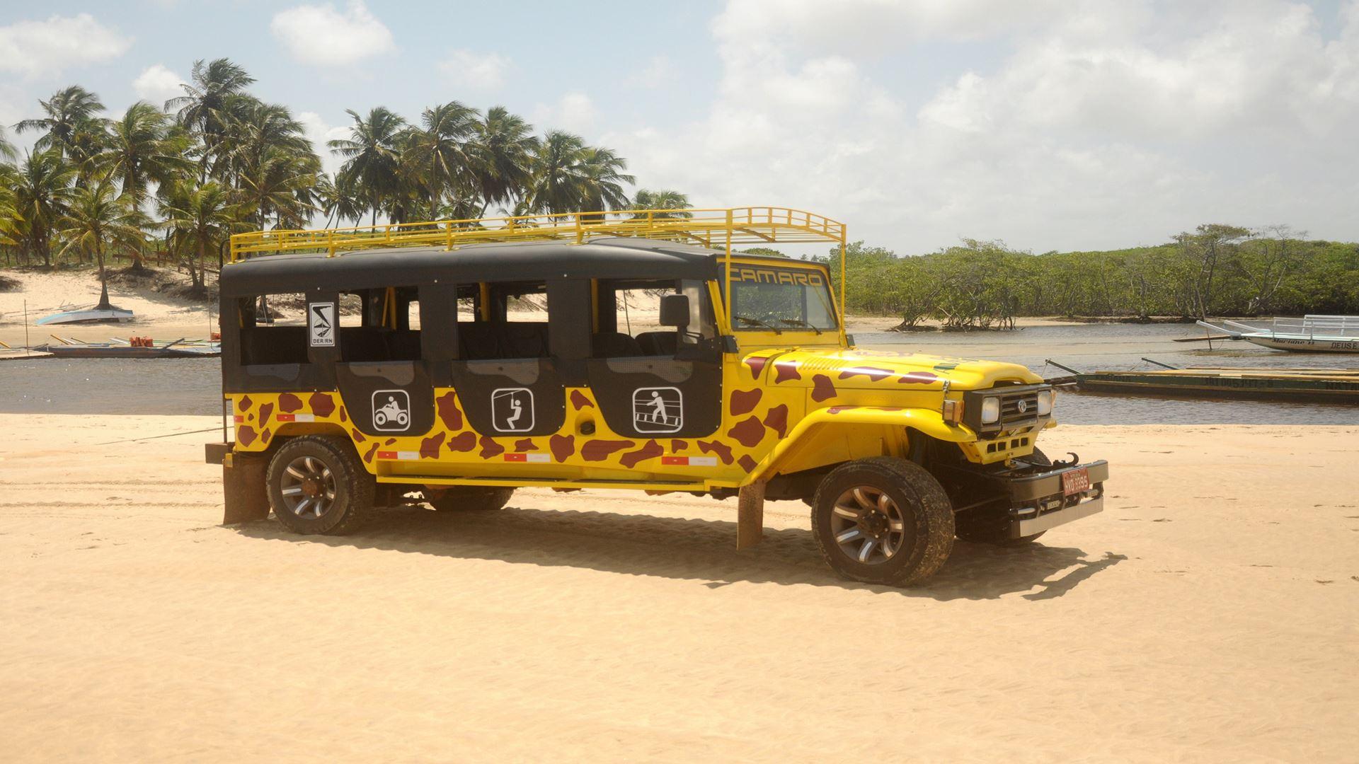 Pipa Jeep Tour with Tree Climbing