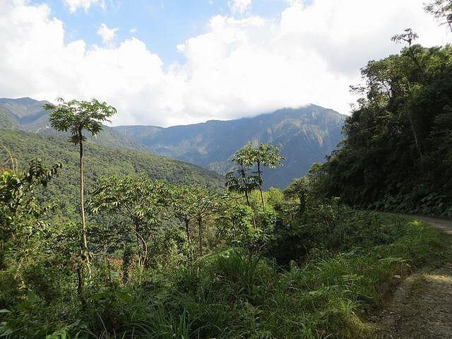Los Yungas – Senda Verde