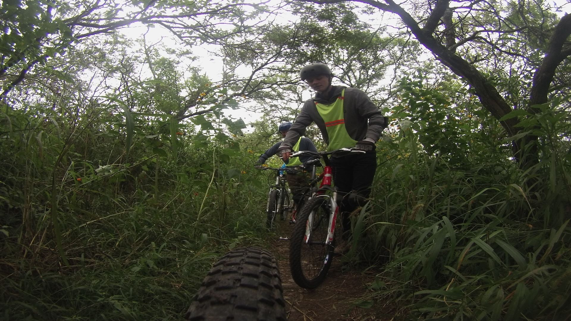 Mountain Bike Rainforest Circuit