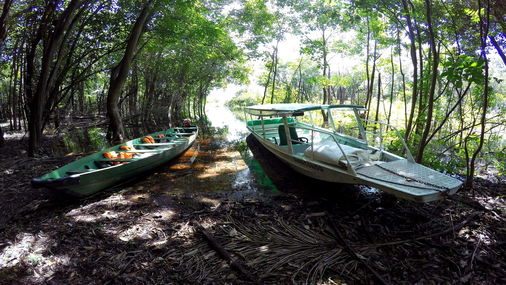 3 Nights Package in the Amazon Jungle