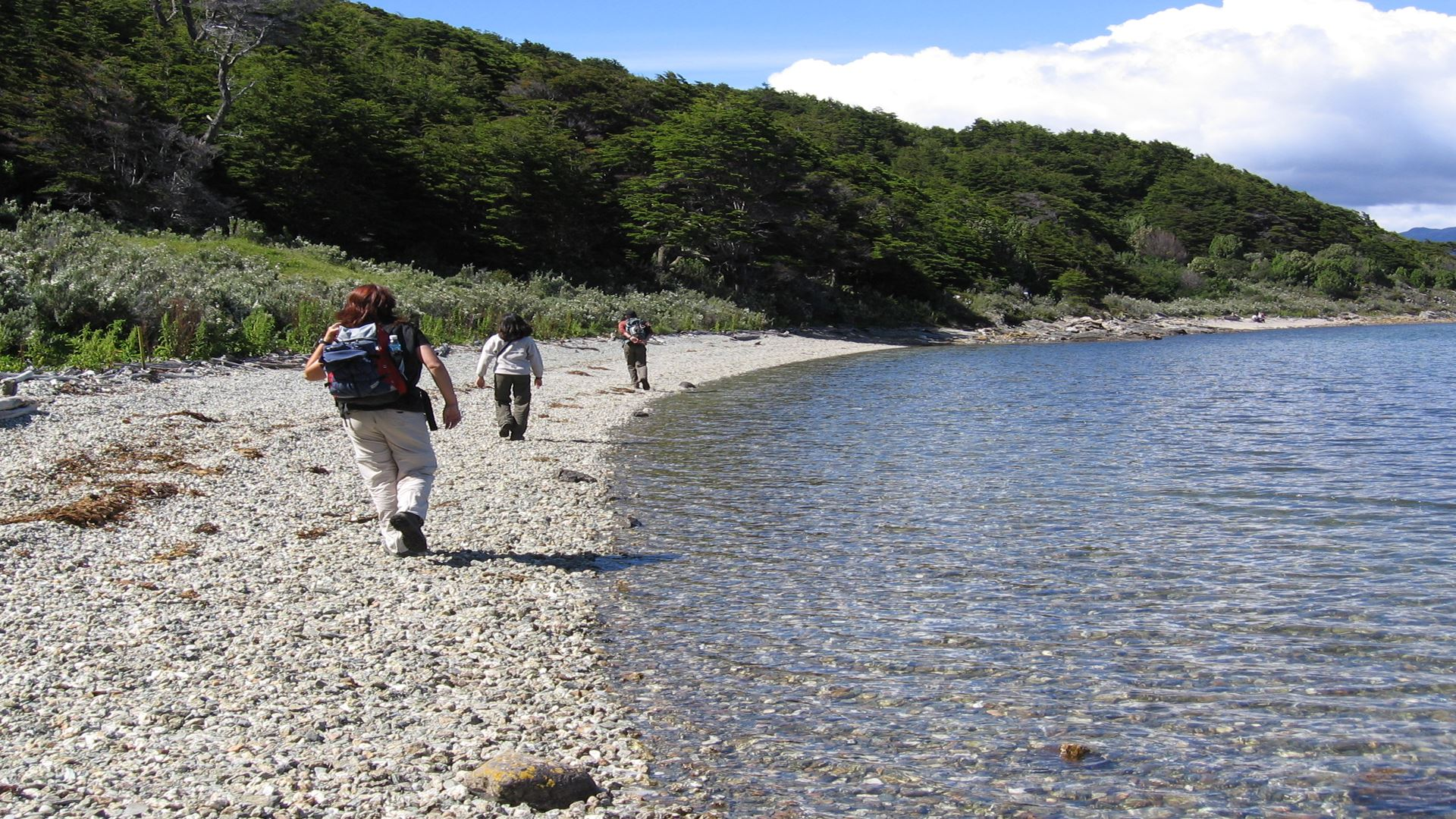 Parque Nacional Tierra Del Fuego Tour