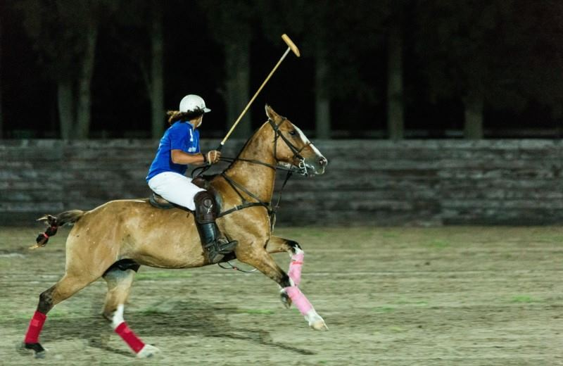 Polo Night