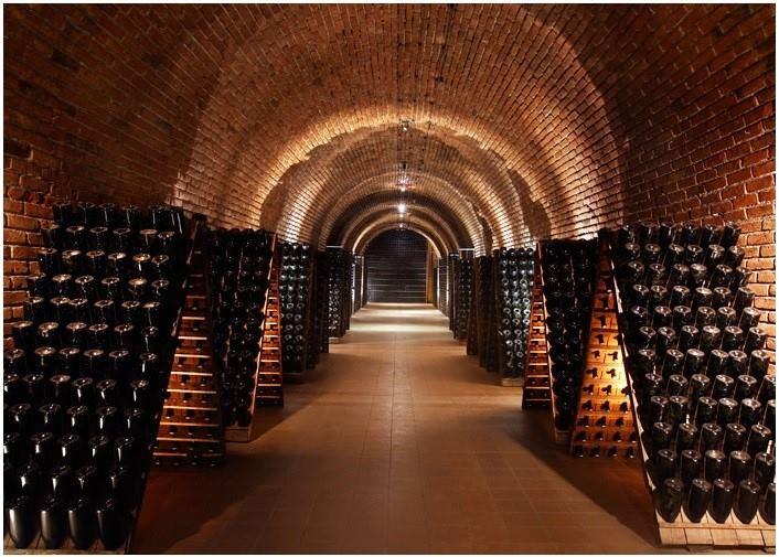 Degustación De Vinos En Las Mejores Bodegas