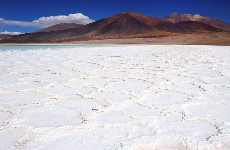 EXIT ATACAMA AND ALTIPLANIC LAGOONS