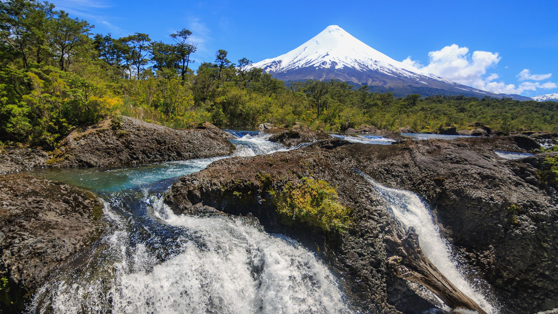 Petrohue Falls and Osorno Volcano by Bike
