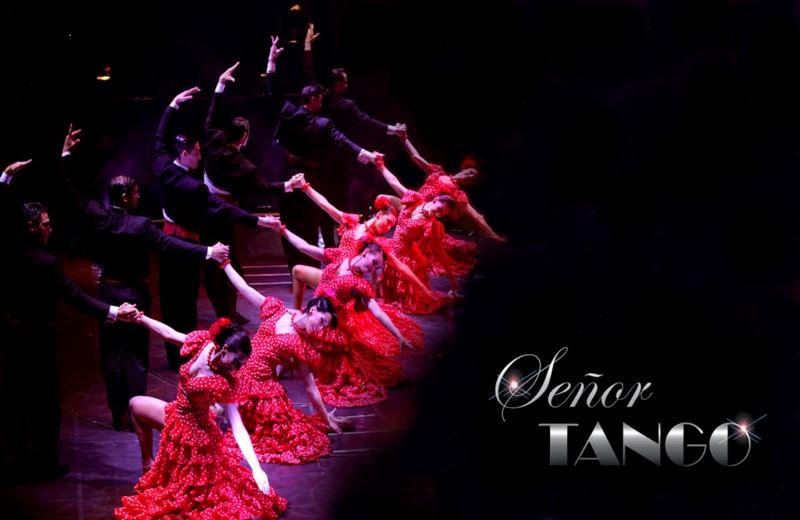 Señor Tango Show