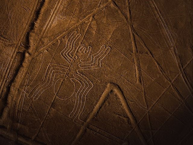 Nazca Lines Air Tour With Transport From Lima