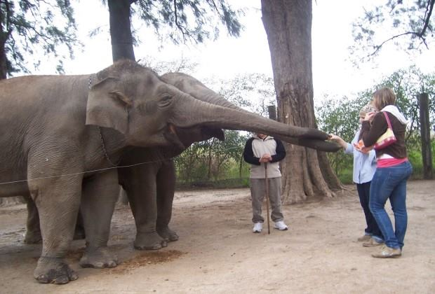 Lujan Zoo Tour