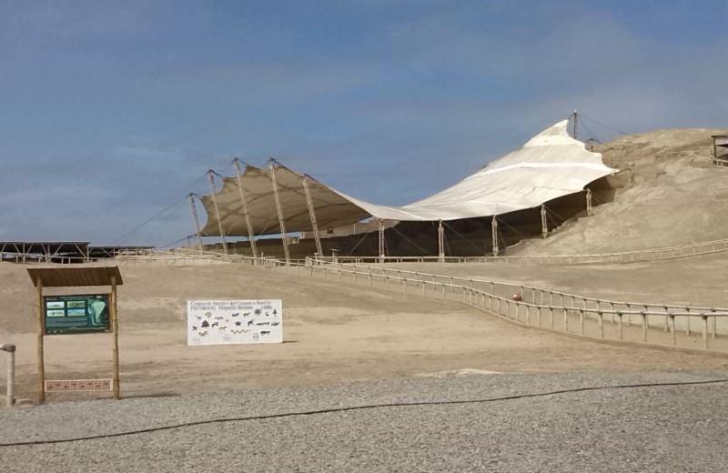 El Brujo Complex Archaeological Tour