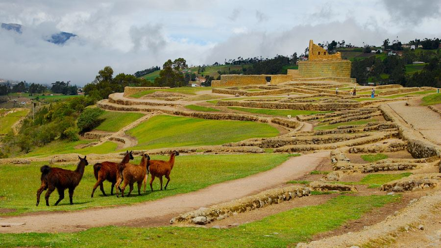 AVENUE TOUR OF ANDEAN VOLCANOES 3 DAYS