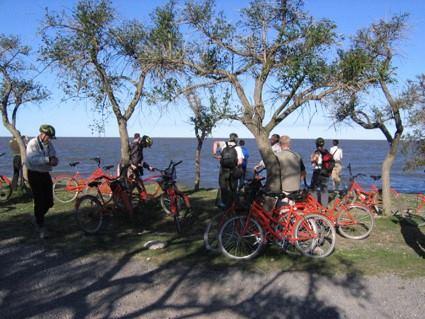 Tour En Bicicleta A Través De Tigre Y San Isidro