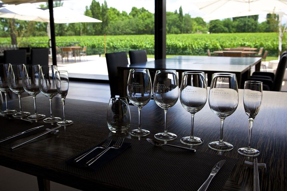 Private Wine Tour: Uco Valley Region
