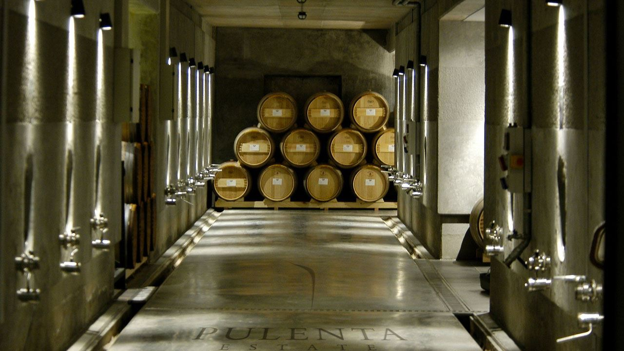 Private Tour with Winemakers