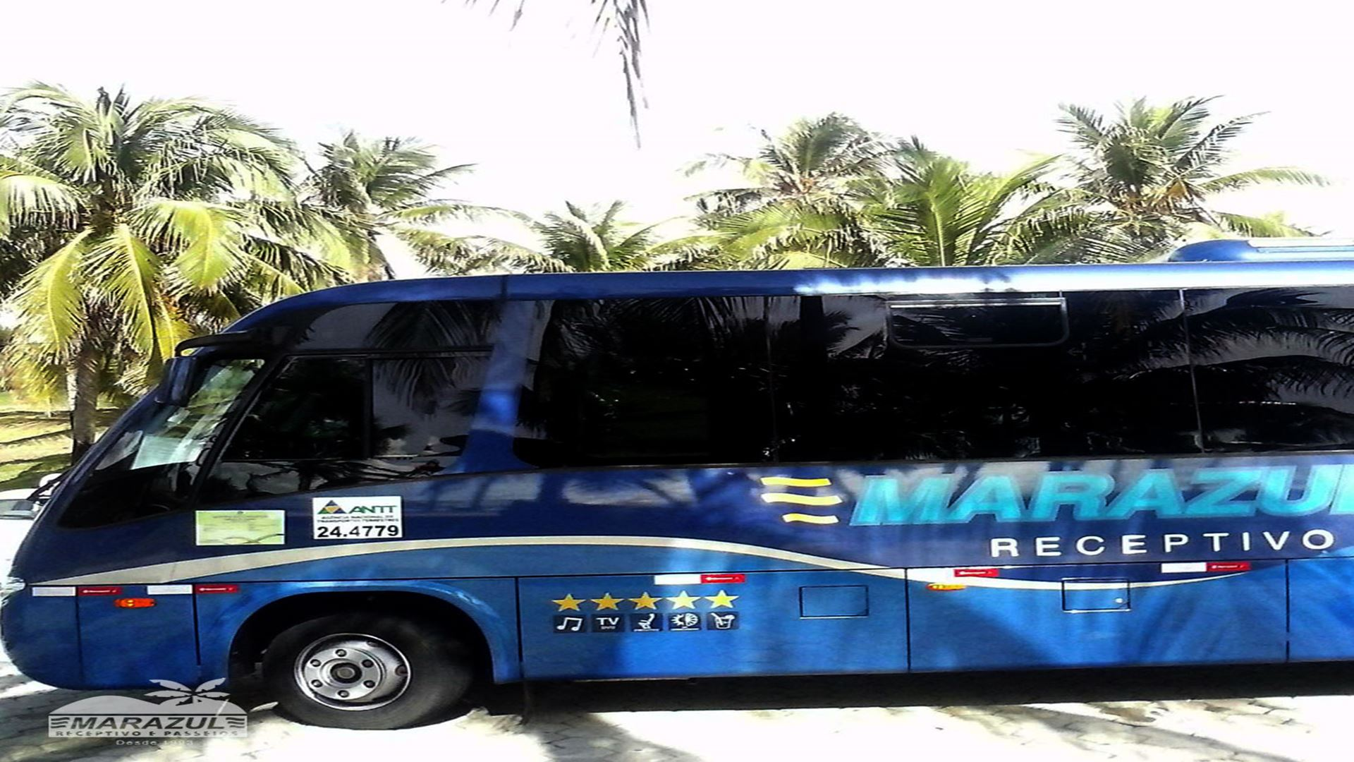 Transfer from Natal Airport to Hotels