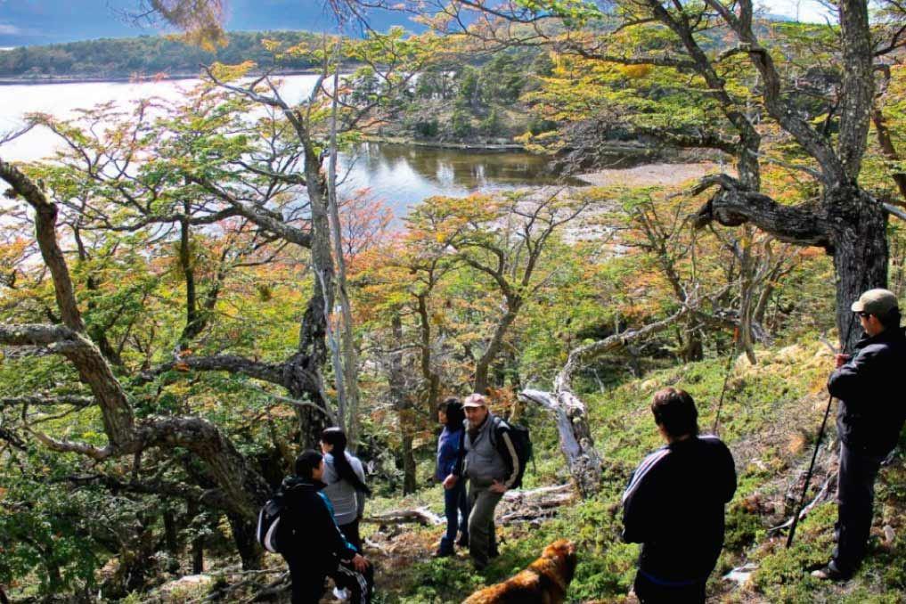 Trekking by Paso Valdivieso to Bahía de Los Renos